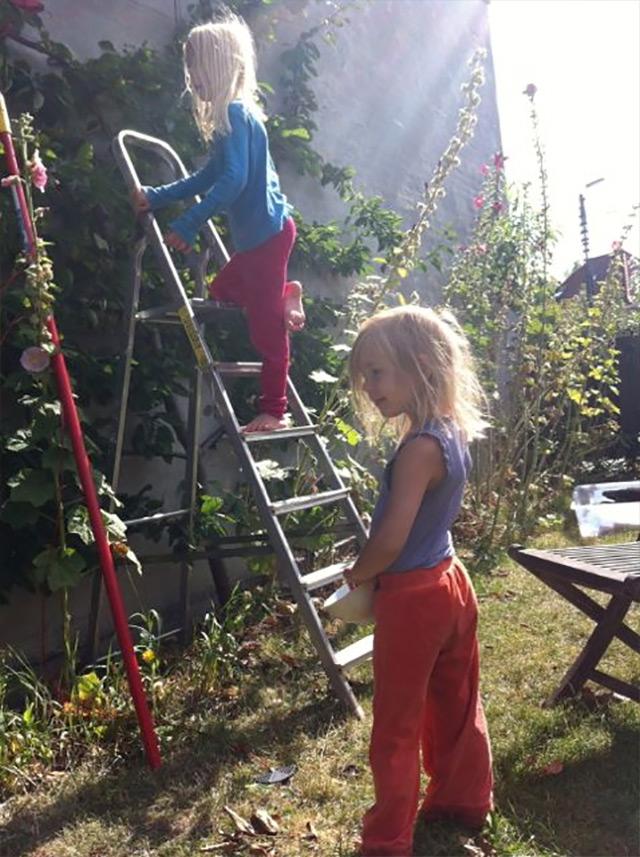 Vi plukker blommer, samarbejder og nyder solen