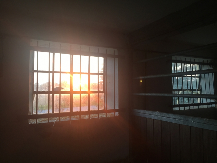 A beautiful sunset from inside the barn