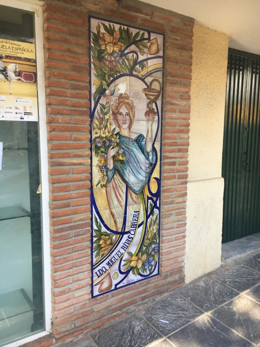 Yet another verison of the tile art in Andalucia. Why not?