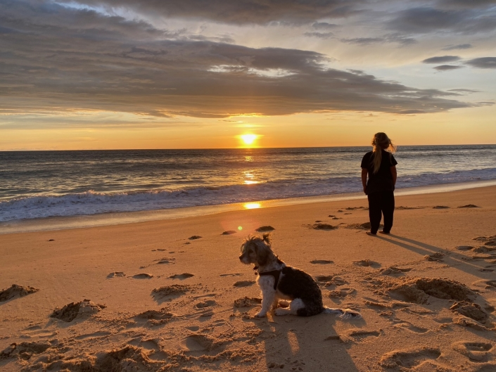 My son, my dog, the sunset